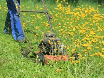 Lawn and Garden Maintenance