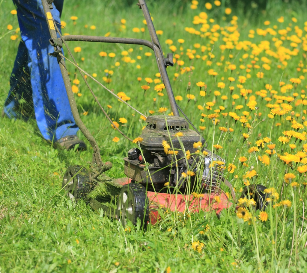 Lawn and gardening